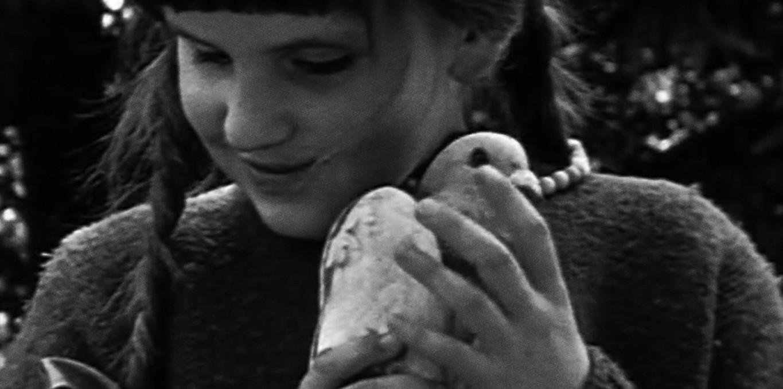 Couverture du film L'Enfant aveugle