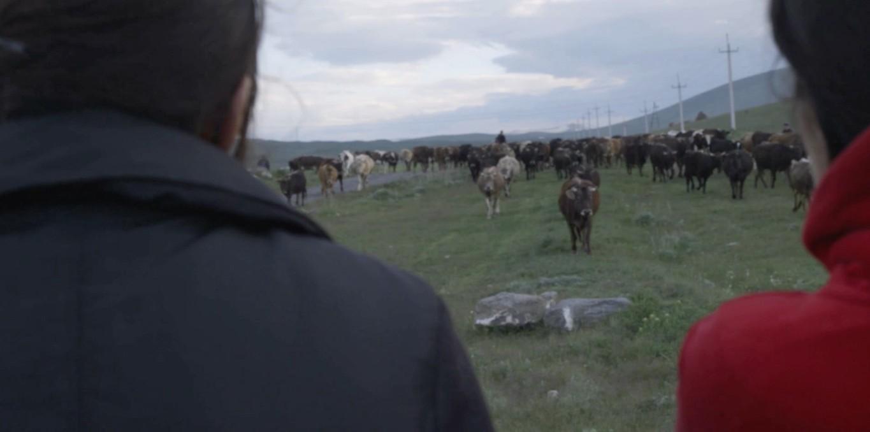 Couverture du film Village de femmes